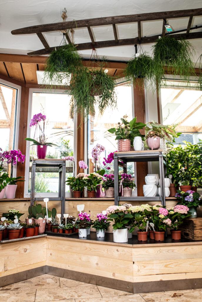 Blumenladen in Lauchringen von Zachi Wiedner Möbel&Raumdesign